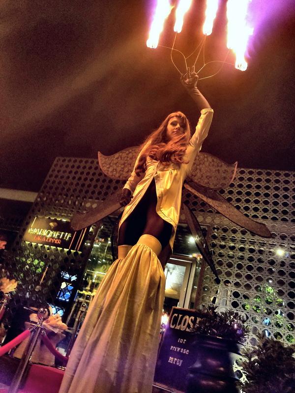 Огнено Шоу Дивинитас посреща гости на кокили